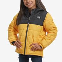 The North Face Boy's Toddler Reversible Mount Chimborazo Hoodie