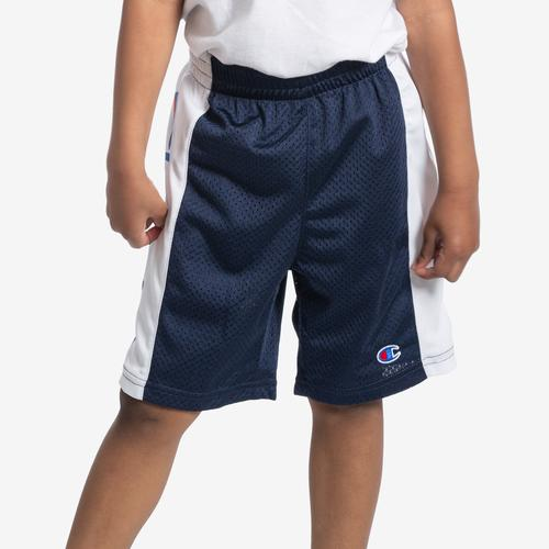 Front View of Champion Boy's Script Heritage Shorts