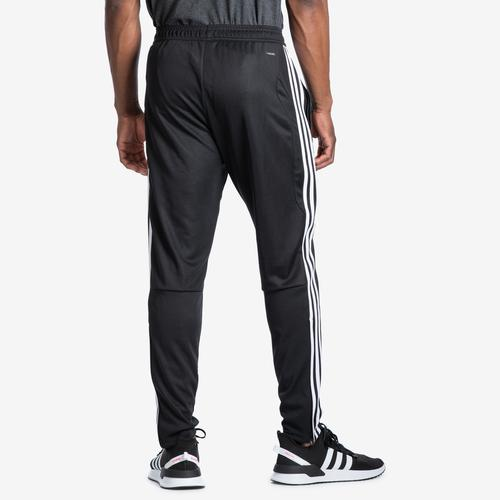 Back View of adidas Men's Tiro 19 Training Pants