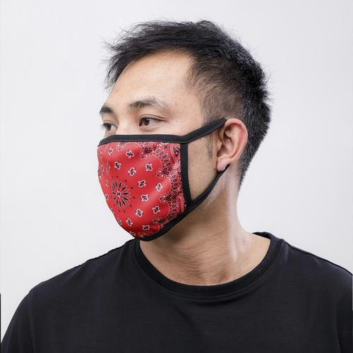 Third View of Hudson Solid Paisley Face Mask