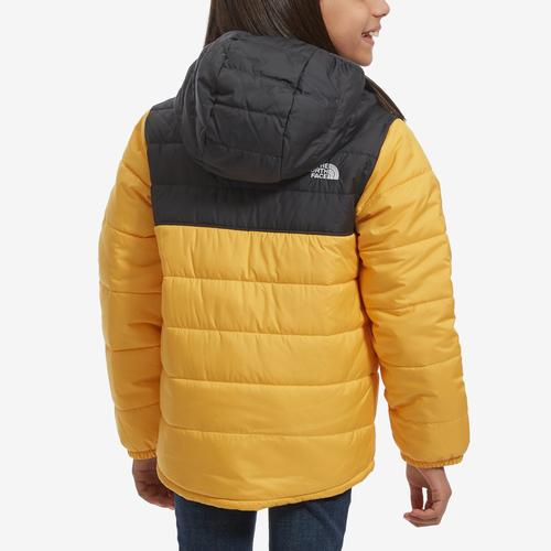 Back View of The North Face Boy's Toddler Reversible Mount Chimborazo Hoodie