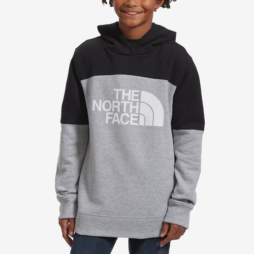 Front View of The North Face Boy's Toddler Metro Logo Pullover Hoodie